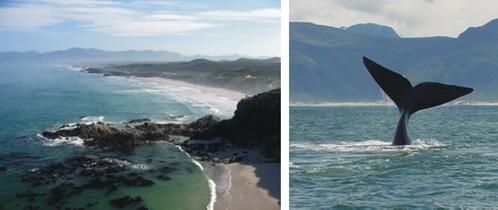 Marebella De Kelders Western Cape South Africa